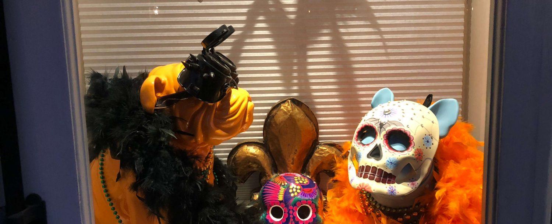 Hallowe'en in New Orleans!!