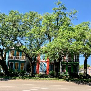 The sun always shines in New Orleans.