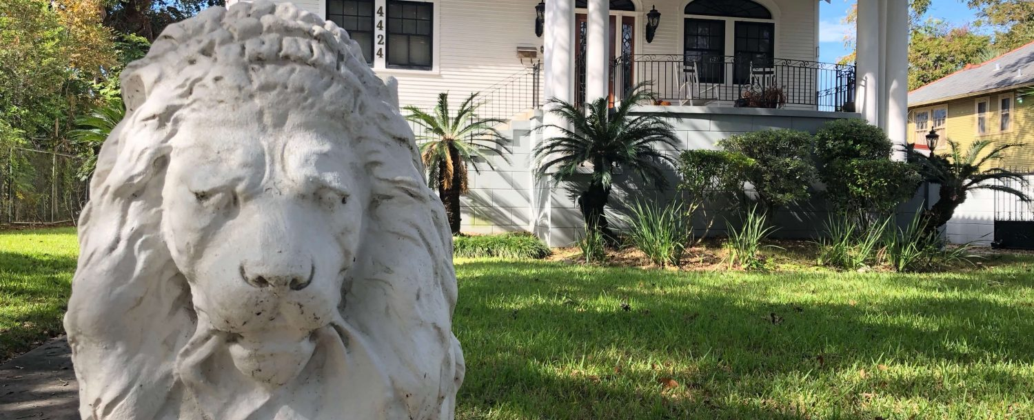 Lion in New Orleans