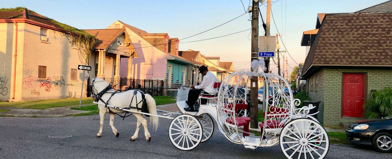 Cinderella's Carriage in New Orleans