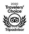 TC_2020